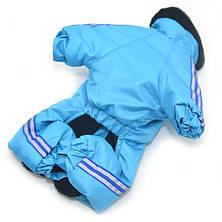 Комбинезон для собак Мех голубой, фото 3