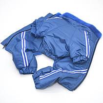 Комбинезон для собак Мех синий, фото 3