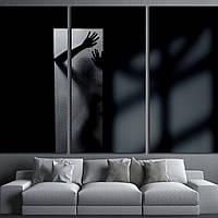 Картина - Тень девушки в черно - белых тонах, для декора спальни