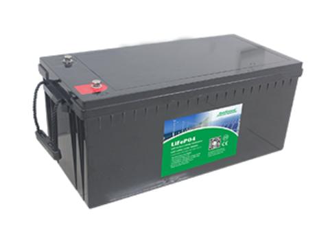 Литий железо фосфатный аккумулятор EverExceed LDP 12-200 (12В 200Ач)