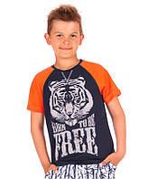 Футболка для мальчика сине-оранжевая Тирг