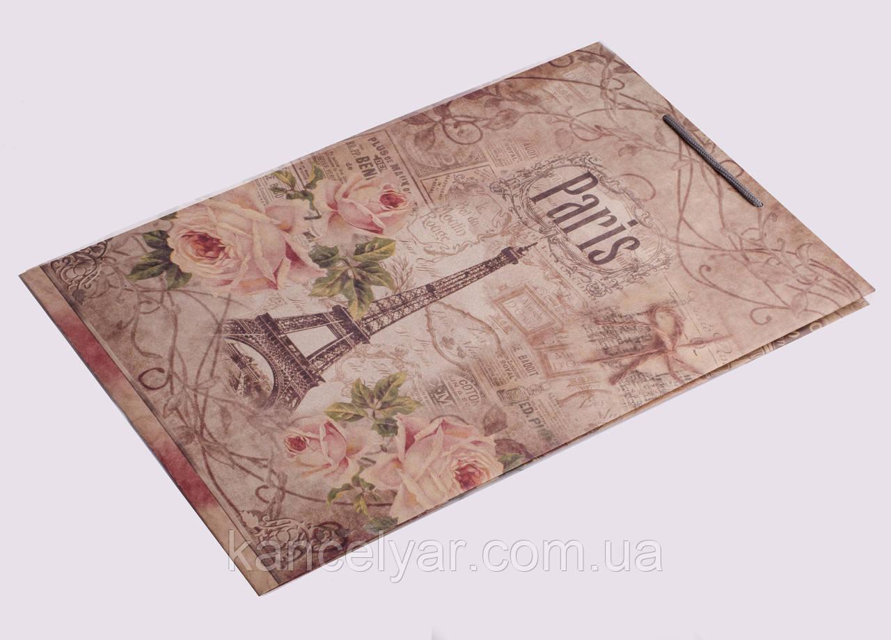 Пакет подарочный, 30х45х12 см, Украина