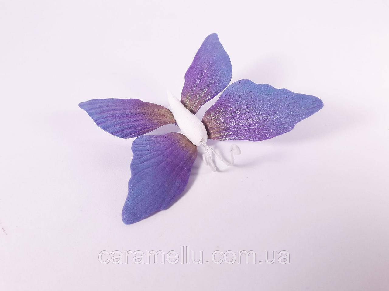 Бабочка из фоамирана Caramellu 6см. Темно-сиреневый с голубым