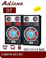 """Активная акустическая система колонки Ailiang DT-613, 90W, 10"""" дюймов, пульт, подсветка"""