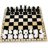 Шахматы 172048 ТМ Дерево