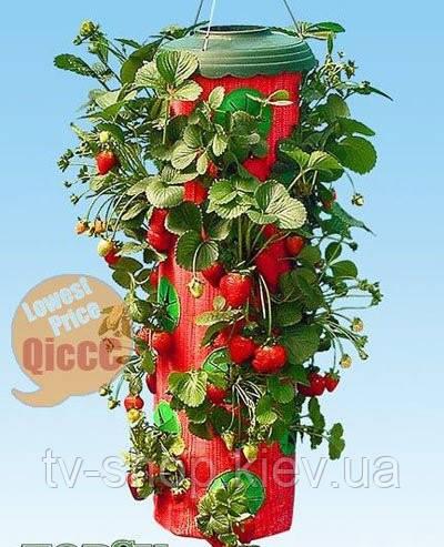 Плантатор клубники  и зелени Topsy Turvy