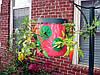 Плантатор клубники  и зелени Topsy Turvy, фото 3
