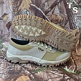Кросівки тактичні 20-01 колір койот, фото 3