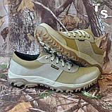 Кросівки тактичні 20-01 колір койот, фото 4