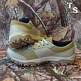 Кросівки тактичні 20-01 колір койот, фото 7