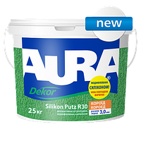 Aura Dekor Silikon Putz R30
