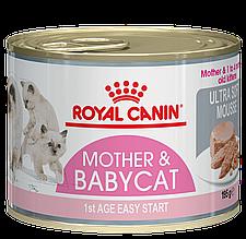 Консервы для котят Royal Canin Babycat Instinctive до 4 месяцев 195 г
