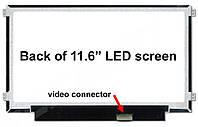 Экран (матрица) NT116WHM-N21