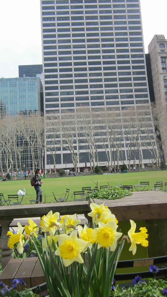 Раздел Длинные туники - фото teens.ua - Нью-Йорк,Брайант-парк