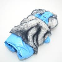 Комбинезон для собак Зайка голубой