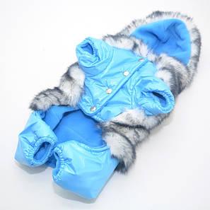 Комбінезон для собак Зайчик блакитний, фото 2