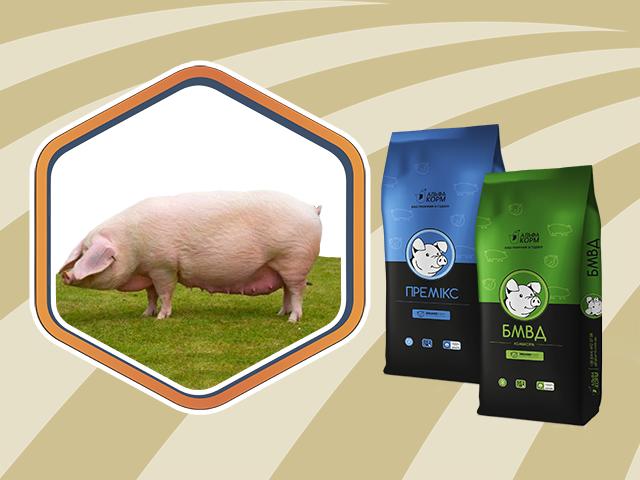 Для супоросних свиноматок