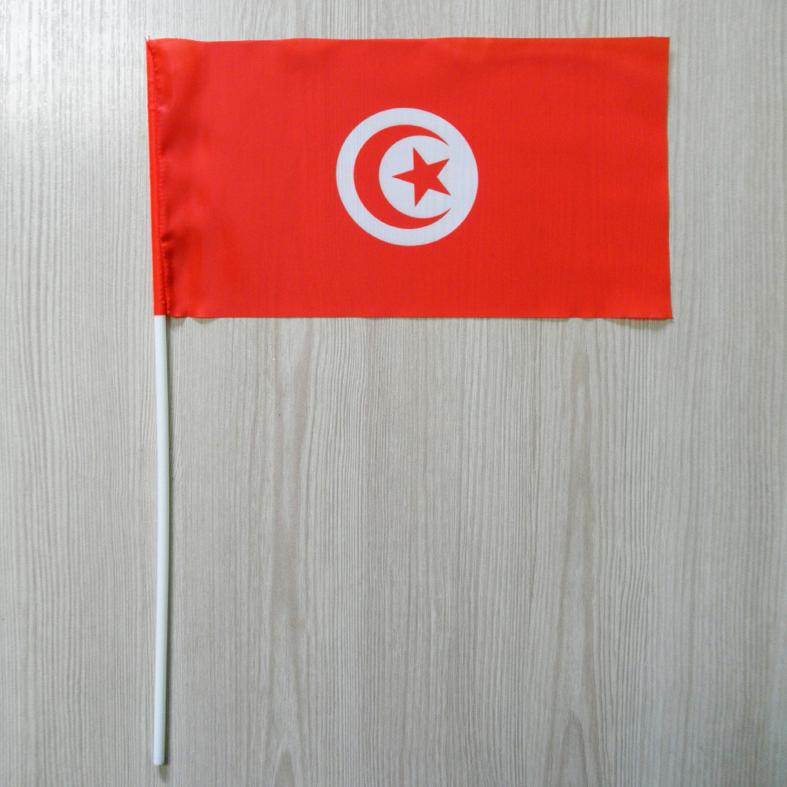 "Флажок ""Тунис""   Флажки Африки  "
