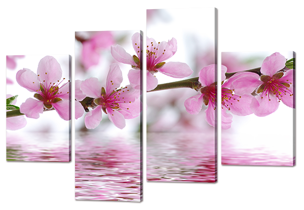 Модульная картина Ветвь сакуры