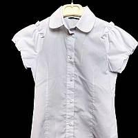 Блузка SLY с короткими рукавами 140 см.