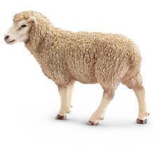 Линии убоя и переработки овец и коз