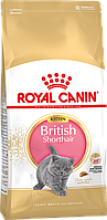Royal Canin British Shorthair Kitten 2 кг сухой корм для котят породы британская короткошерстная