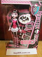 Monster High Original Favorites Draculaura Doll Дракулаура базовая, фото 1