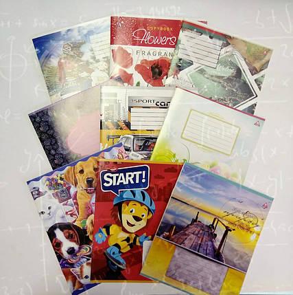 Зошит шкільна 12 аркушів В5 формат білий аркуш клітка і лінія в асортименті, фото 2