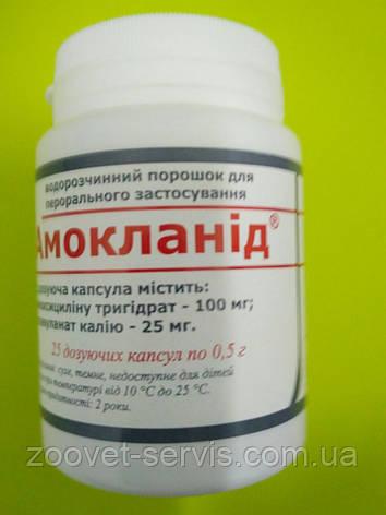 Амокланид, фото 2
