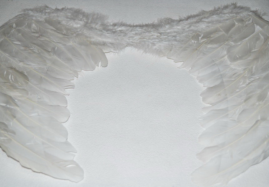 Белые крылья ангела. Натуральные