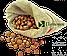 "Фундук сырой калибр 15. ТМ ""Progida"" (Турция) вес:250гр, фото 3"