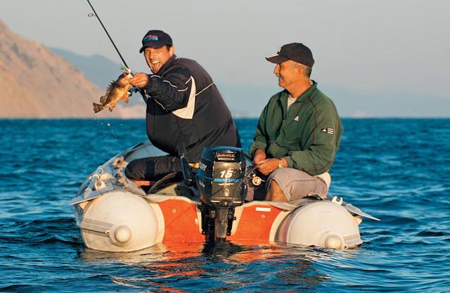 Активность рыбы 17 и 18 ноября.