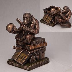 Скринька Veronese Мавпа на книгах 17 см 76129