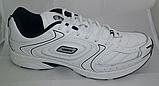 Мужские кожаные кроссовки Veer Demax размер  ЕВРО 41 42 43 44 45 46, фото 2