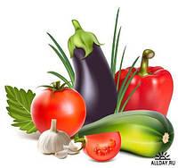 Семена овощей и зелени крупным оптом от производителя.