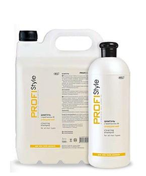 Шампунь очищающий для всех типов волос Biki ProfiStyle, 5000 мл