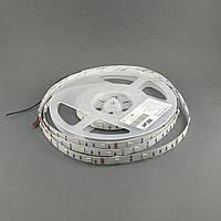 Светодиодная лента 5050/30 IP20 премиум RGB, фото 1