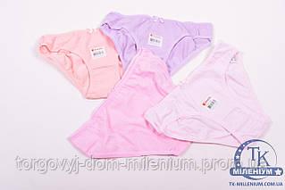 Плавки для девочки трикотажные Donella от 12 до 13 лет (95проц. cotton, 5проц. elastane) 12/13-5171W