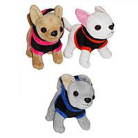 Мягкая игрушка SF265362  собачки, 3 вида, в пакете 15*16 см.