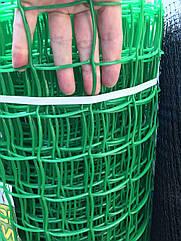 Пластикова сітка забірна 1 х 20 (50х50мм)