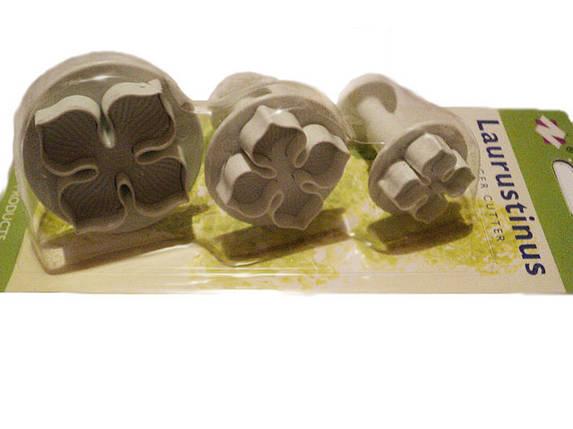 Набор кондитерских форм для мастики Гортензия, фото 2