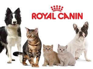 Корм для котів та собак.