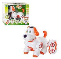 Собака PLAY SMART 9599 Арго на интерактивный  музыкальная игрушка детская свет.коробке 32*22*19  ш.к./12/