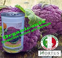 Капуста цветная пурпурная (фиолетовая) сицилийская, ТМ Hortus (Италия), банка 500 грамм, фото 1