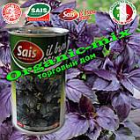 Семена, Базилик фиолетовый РЕД РУБИН / RED RUBIN (банка 500 г) SAIS Италия, фото 2