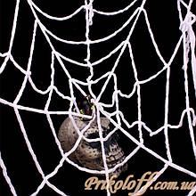 Паутина с пауком «Черная вдова» павутина з павуком