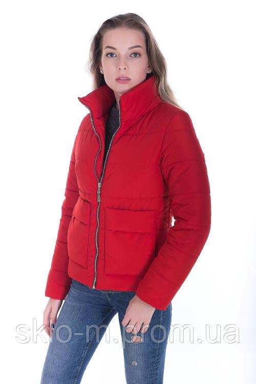 909e22848a9 Молодёжная женская осенняя куртка размер плюс Лаура красный (42-52) -  Интернет магазин