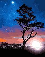 Картина по номерам 40х50 В звёздном сиянии (GX23214)