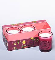 Набор из 3 свечей аром. Базилик и мандарин в под. кор. WD-16/1