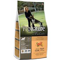 Pronature Holistic (Canada) / Пронатюр Холистик (Канада)